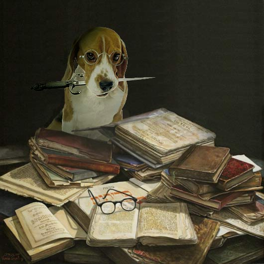 2013_30_Beagle_Sefarim_Books_by_VardaGinsburg
