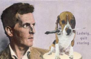 2014_04_Beagle_Wittgenstein_530