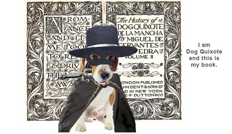 2015_07_Beagle_DogQuixote-Zorro740