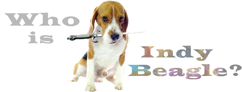 2016_21_Who_is_Indy_Beagle_4_780